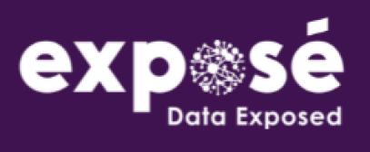 Expose_ Data Exposed _ Data Analytics Consultants