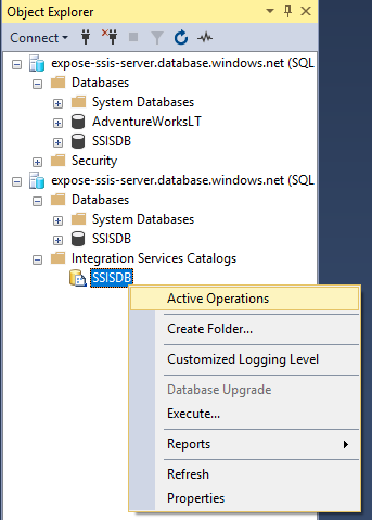 Integration Services Catalog